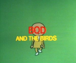 Bod and the birds