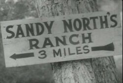 A sign is nailed to a tree stating 3 miles to the Sandy North ranch