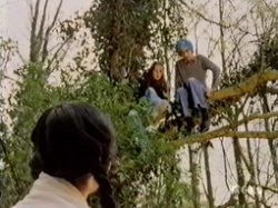 Nicky and Gopal are climbing trees