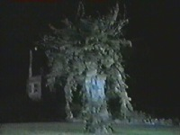 Tolly goes outside and is pursued by the Demon Tree